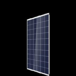 Trina 60 Cell 265-285W